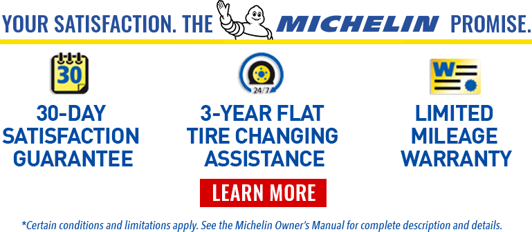 michelin promisse banner headline